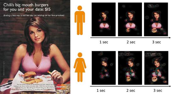 Vergleich der visuellen Wirkung erotischer Werbung bei Männern und Frauen